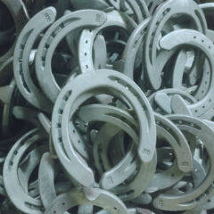 Customized Standard Horseshoes