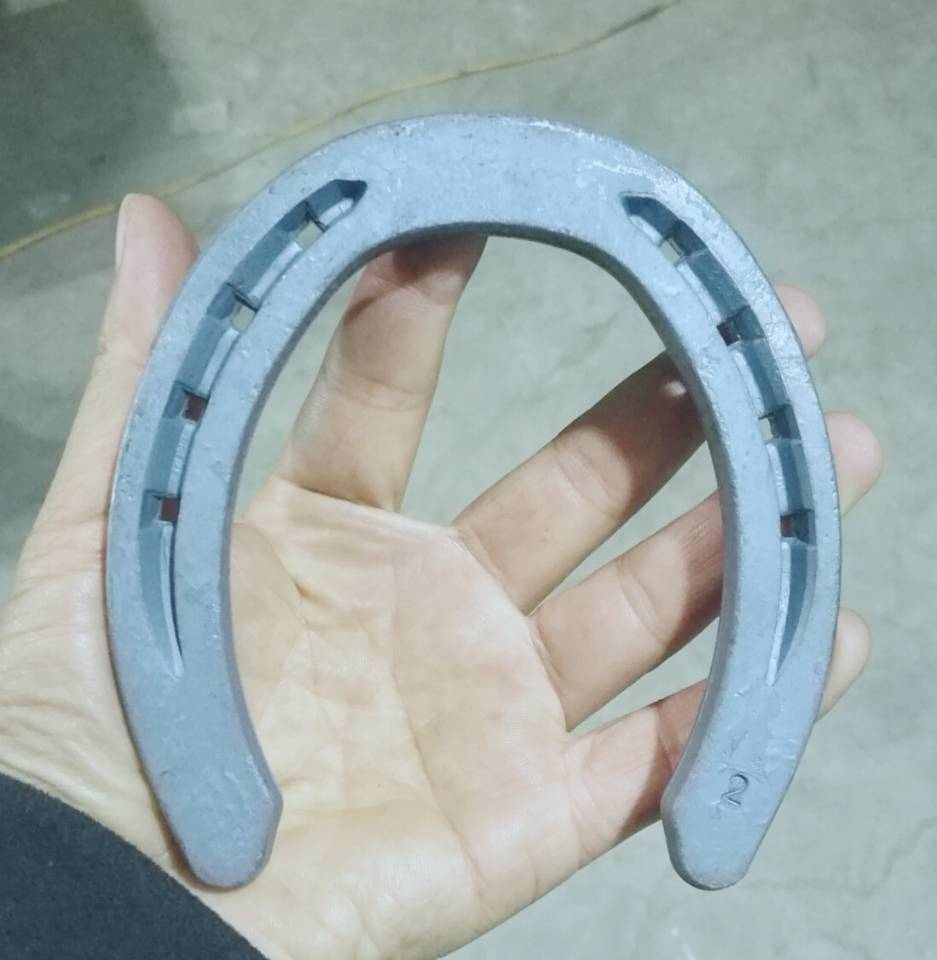 Customized Riding Horseshoes